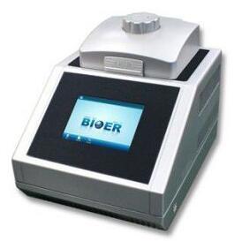 博日 bioer LifeECO PCR仪/基因扩增仪 经济型